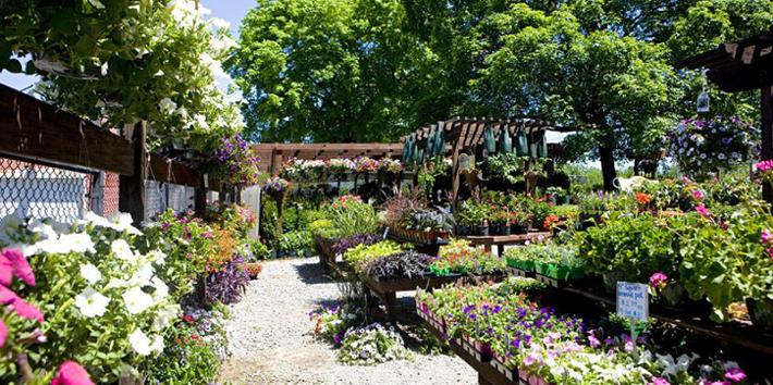 21 Excellent Garden Center Jobs Nashville