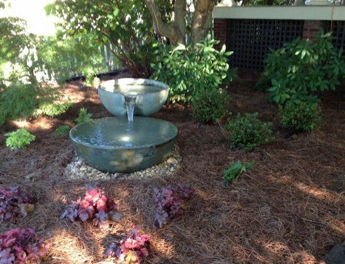 Landscaping Services in Murfreesboro