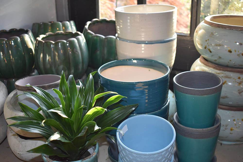 Indoor Pottery For Plants At Nashville Garden Center