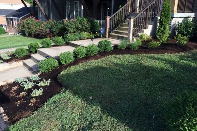Mulched Siding Next To Walkway