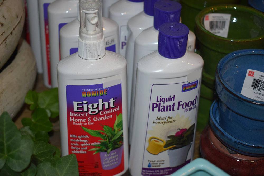 Plant Care At JVI Secret Gardens