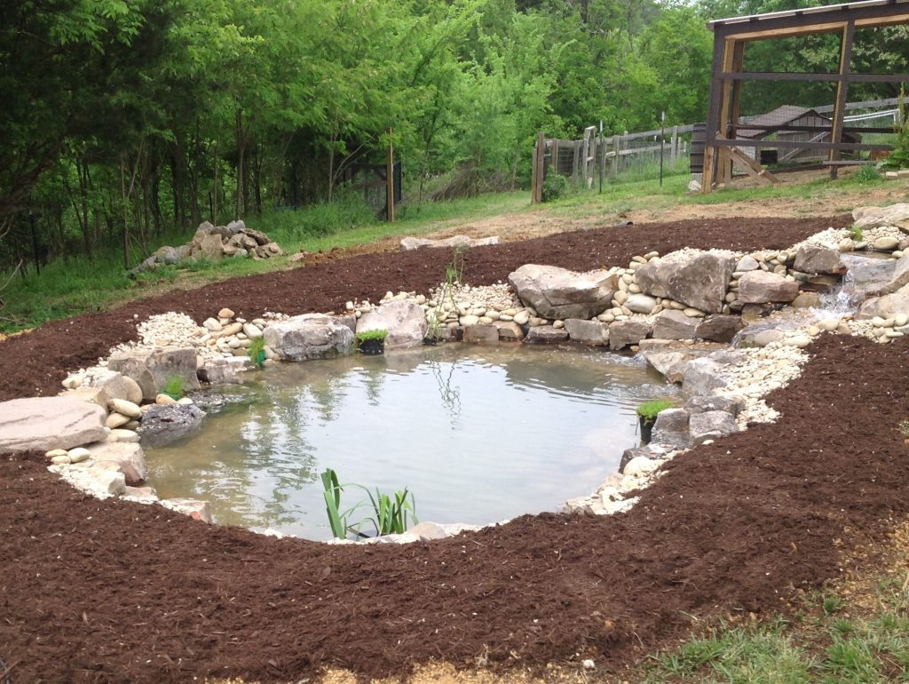 Finished Pond in Gallatin